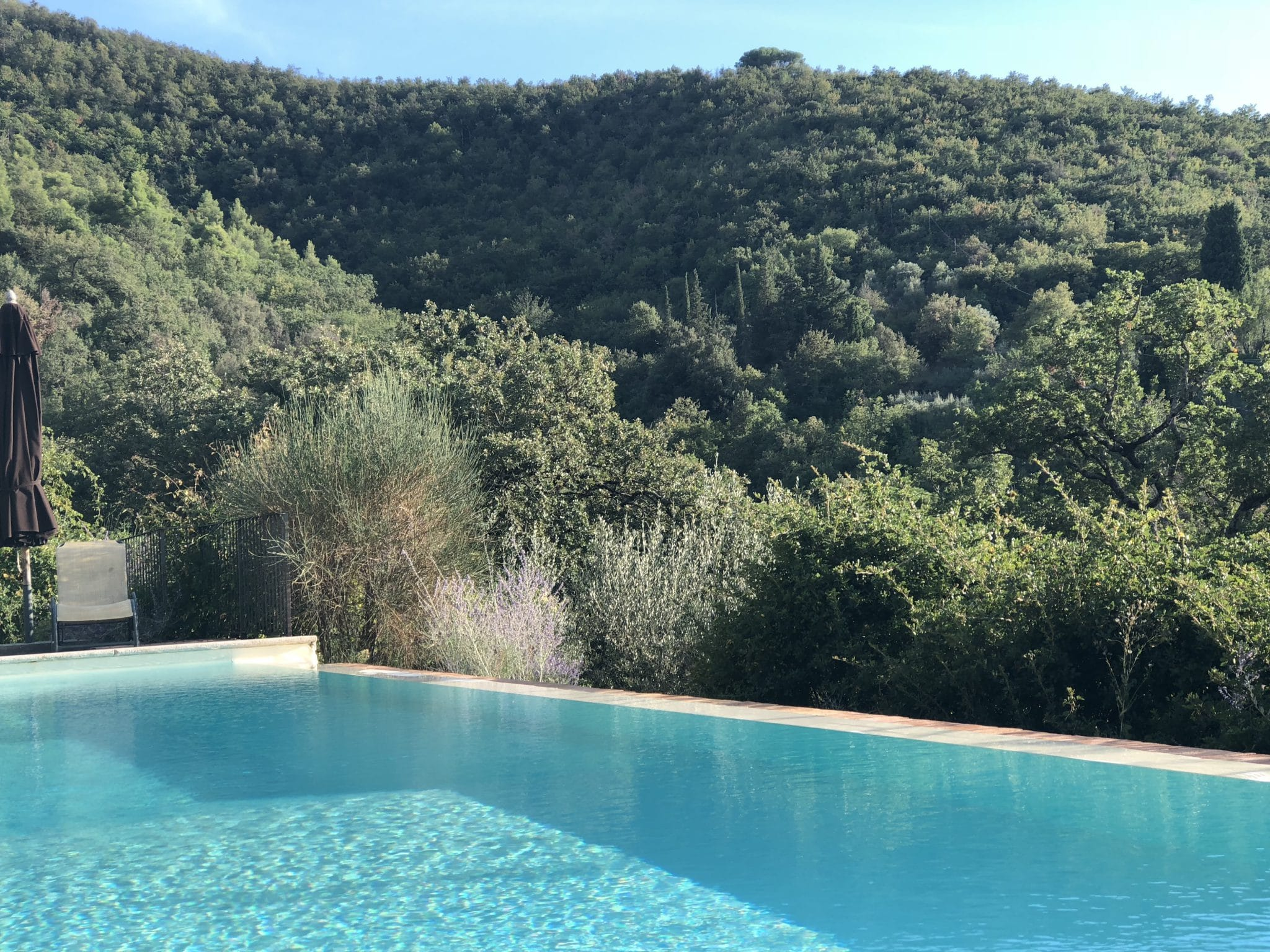 tartagli pool